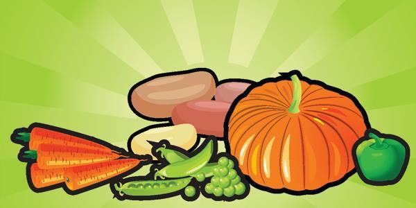 Popsi porkkanaa ja 7 muuta hedelmää ja vihannesta koirallesi