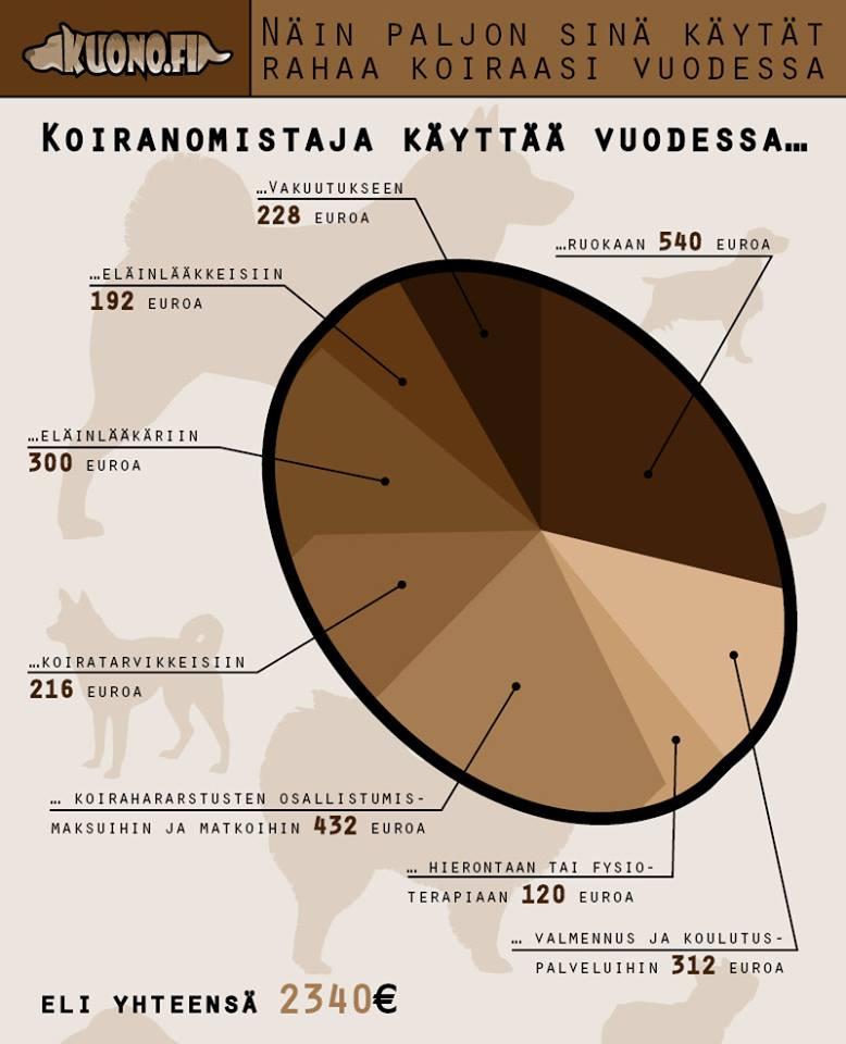 Koiran kustannukset vuodessa: 2 340 euroa