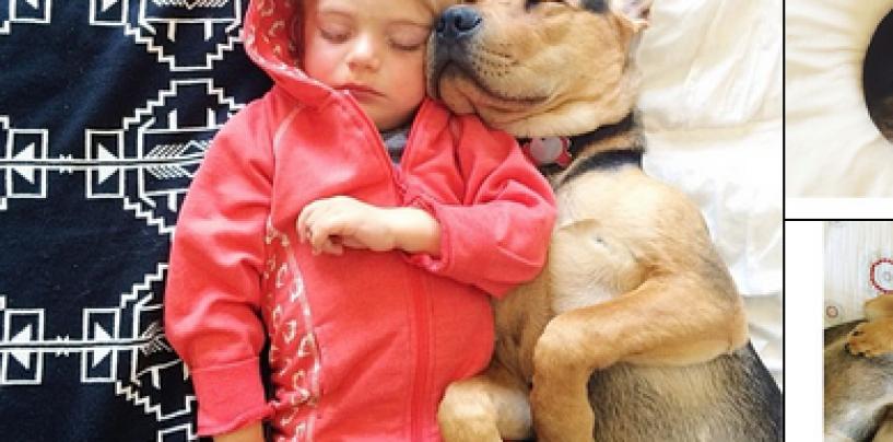 Maailman suloisin nukkuva parivaljakko on tässä – Katso söpöt kuvat