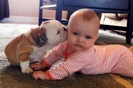 Pentu pusutteli vauvaa – katso söpö video!