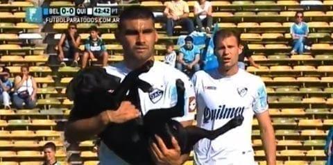 Koira eksyi jalkapallokentälle –jakoi rakkautta, sai rapsutuksia!