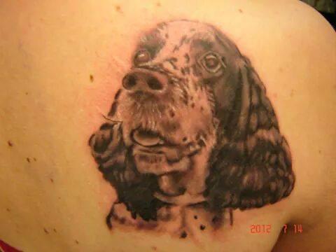 Katja Mäkitalo. Mulla on mun englanninspringerspanieli Olli tatuoitu selkään. ♡