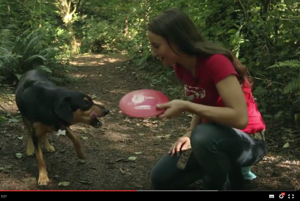 Frisbee hukassa? Tämä koira merkkaa hukkuneen kiekon