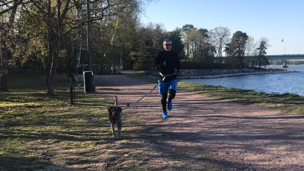 Juoksuvyöt testissä – koiran kanssa lenkille